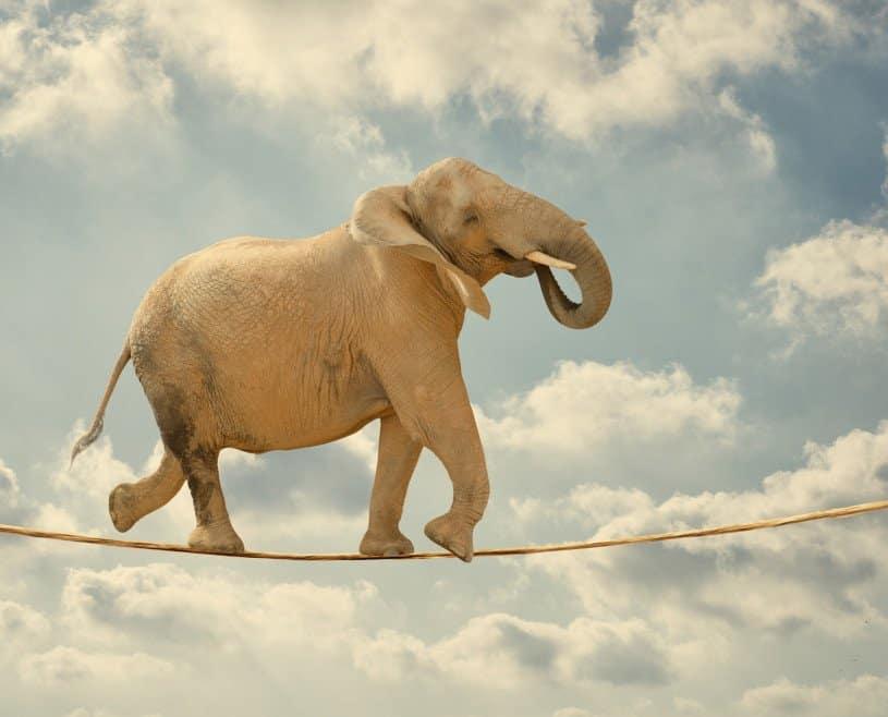 balancing_act_intercultural_leadership